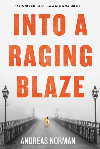 Into a Raging Blaze, Andreas Norman