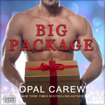 Download Big Package by Opal Carew