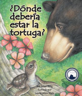 ¿Dónde debería estar la tortuga?