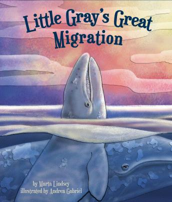 Little Gray's Great Migration