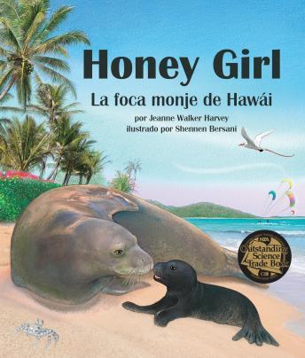 Honey Girl: La foca monje de Hawái