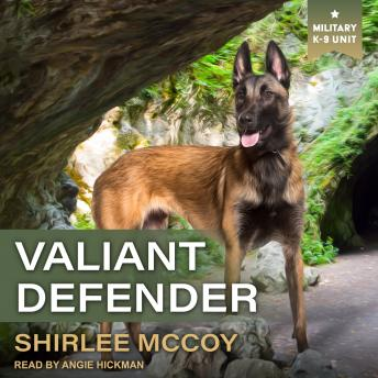 Valiant Defender, Audio book by Shirlee Mccoy