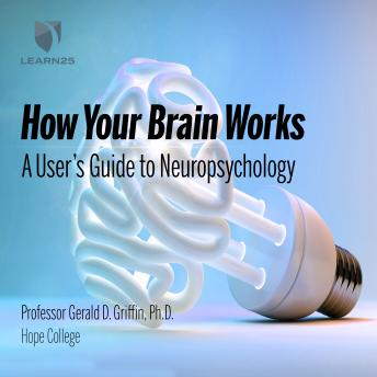 How Your Brain Works: A User's Guide to Neuropsychology details
