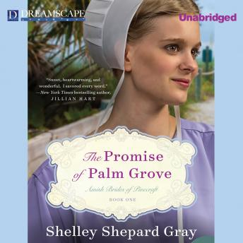 Download Promise of Palm Grove by Shelley Shepard Gray