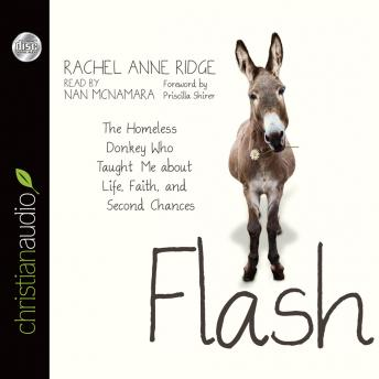 Flash: The Homeless Donkey Who Taught Me about Life, Faith, and Second Chances, Rachel Anne Ridge, Nan McNamara