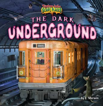 The Dark Underground