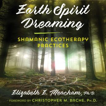 Earth Spirit Dreaming: Shamanic Ecotherapy Practices, Elizabeth E. Meacham