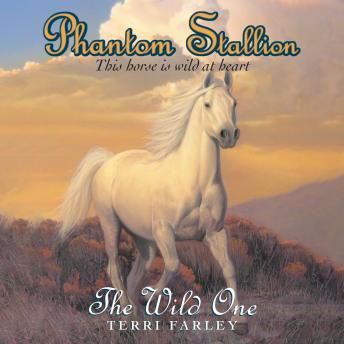 Phantom Stallion: The Wild One