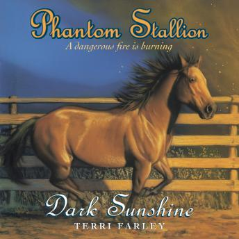 Phantom Stallion: Dark Sunshine