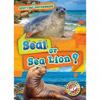Seal or Sea Lion?