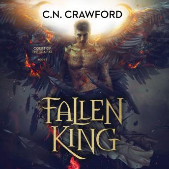 Fallen King details