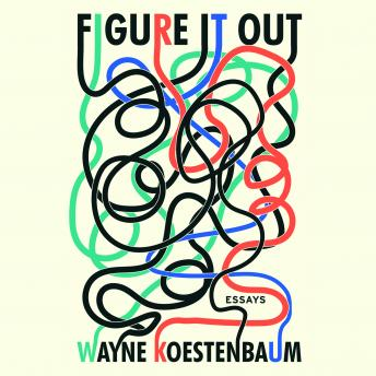 Figure it Out: Essays, Wayne Koestenbaum