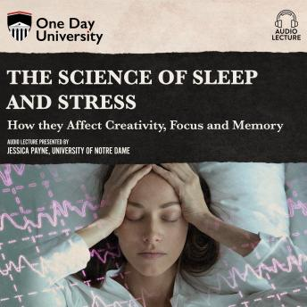 Science of Sleep and Stress: How they Affect Creativity, Focus, and Memory details