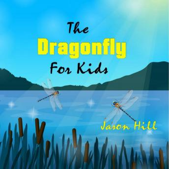 The Dragonfly for Kids