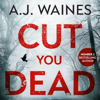 Cut You Dead (Samantha Willerby Mystery Series Book 4) details
