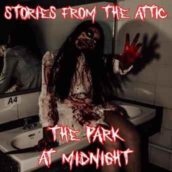 Download Park at Midnight by Stories From The Attic