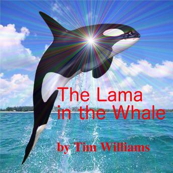 Download Lama in the Whale by Tim Williams