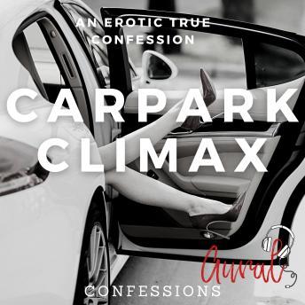 Carpark Climax: An Erotic True Confession