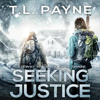 Seeking Justice: A Post-Apocalyptic EMP Survival Thriller
