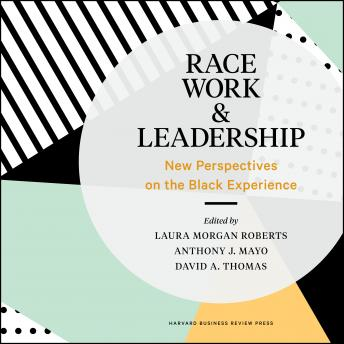 Race, Work, and Leadership: New Perspectives on the Black Experience