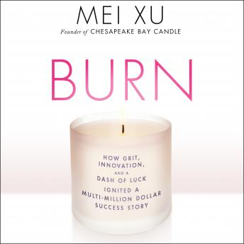 Burn: How Grit, Innovation, and a Dash of Luck Ignited a Multi-Million Dollar Success Story