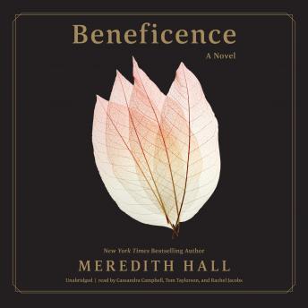 Beneficence: A Novel