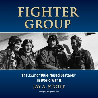 Download Fighter Group: The 352nd