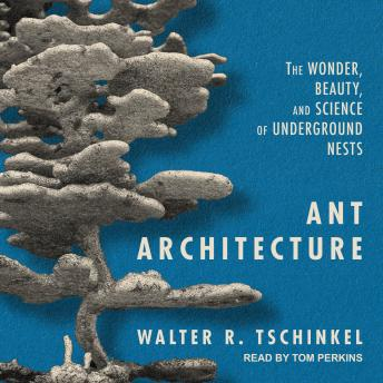 Ant Architecture: The Wonder, Beauty, and Science of Underground Nests