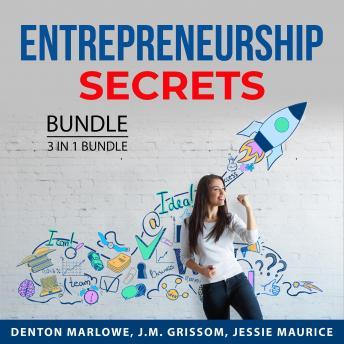 Entrepreneurship Secrets Bundle, 3 in 1 Bundle: Business Ideas, Entrepreneur Drive and Mindset,  Top