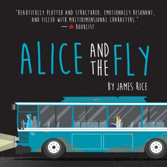 Alice and the Fly, James Rice