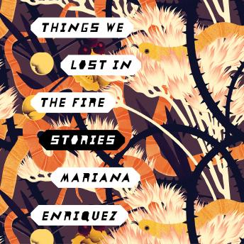 Things We Lost in the Fire: Stories, Mariana Enriquez