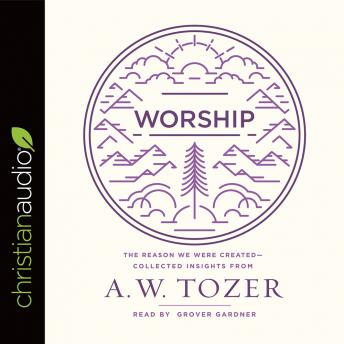Worship: The Reason We Were Created-Collected Insights from A. W. Tozer, A. W. Tozer