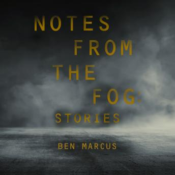 Notes from the Fog: Stories
