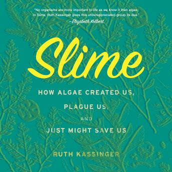 Download Slime: How Algae Created Us, Plague Us, and Just Might Save Us by Ruth Kassinger