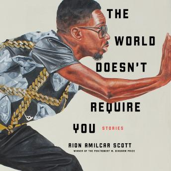 The World Doesn't Require You: Stories Audiobook Free Download Online