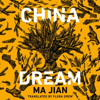 China Dream details