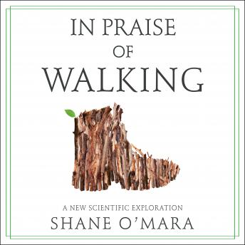 Download In Praise of Walking: A New Scientific Exploration by Shane O'mara