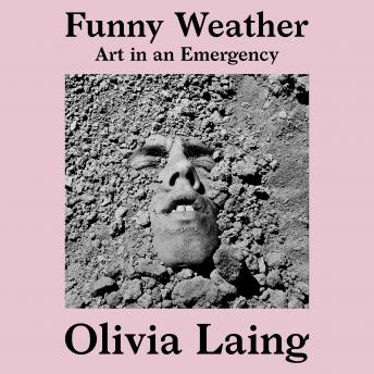 Funny Weather: Art in an Emergency details