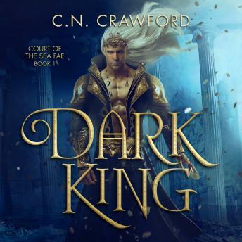 Dark King details