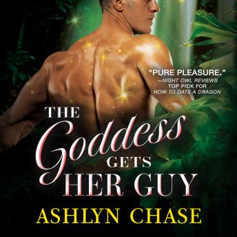 Download Goddess Gets Her Guy by Ashlyn Chase