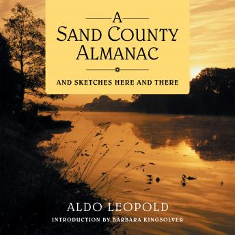 A Sand County Almanac: And Sketches Here and There