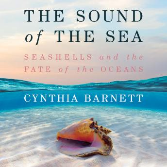 The Sound of the Sea: Seashells and the Fate of the Oceans