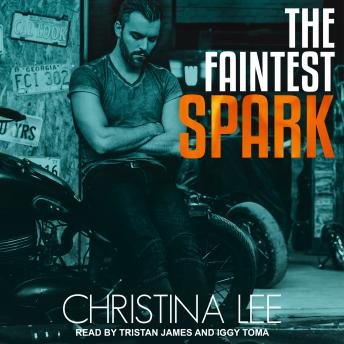 Download Faintest Spark by Christina Lee