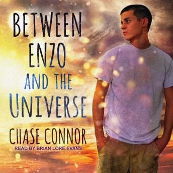 Between Enzo and the Universe