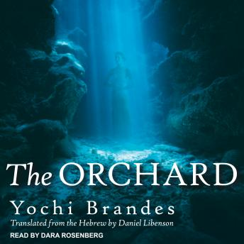 Download Orchard by Yochi Brandes