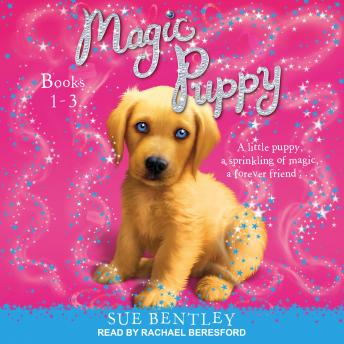 Magic Puppy: Book 1-3 details