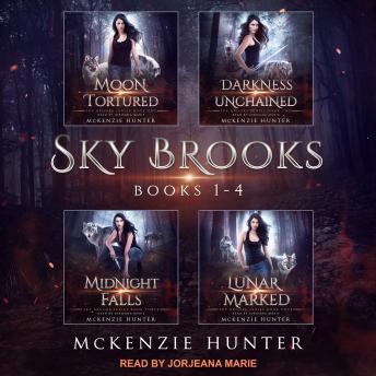 Sky Brooks: Books 1-4 Box Set