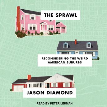The Sprawl: Reconsidering the Weird American Suburbs