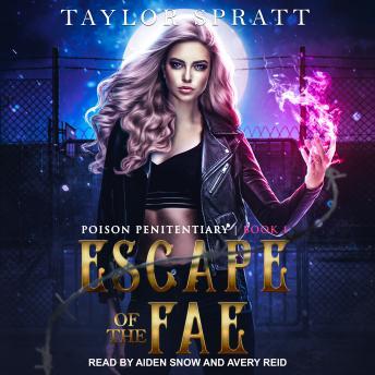 Escape of the Fae details