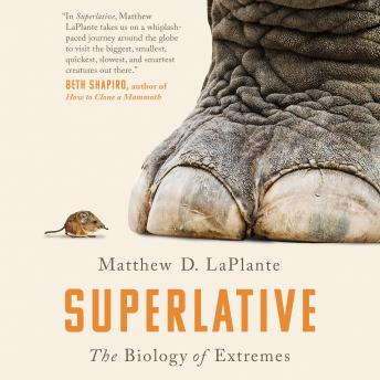 Superlative: The Biology of Extremes